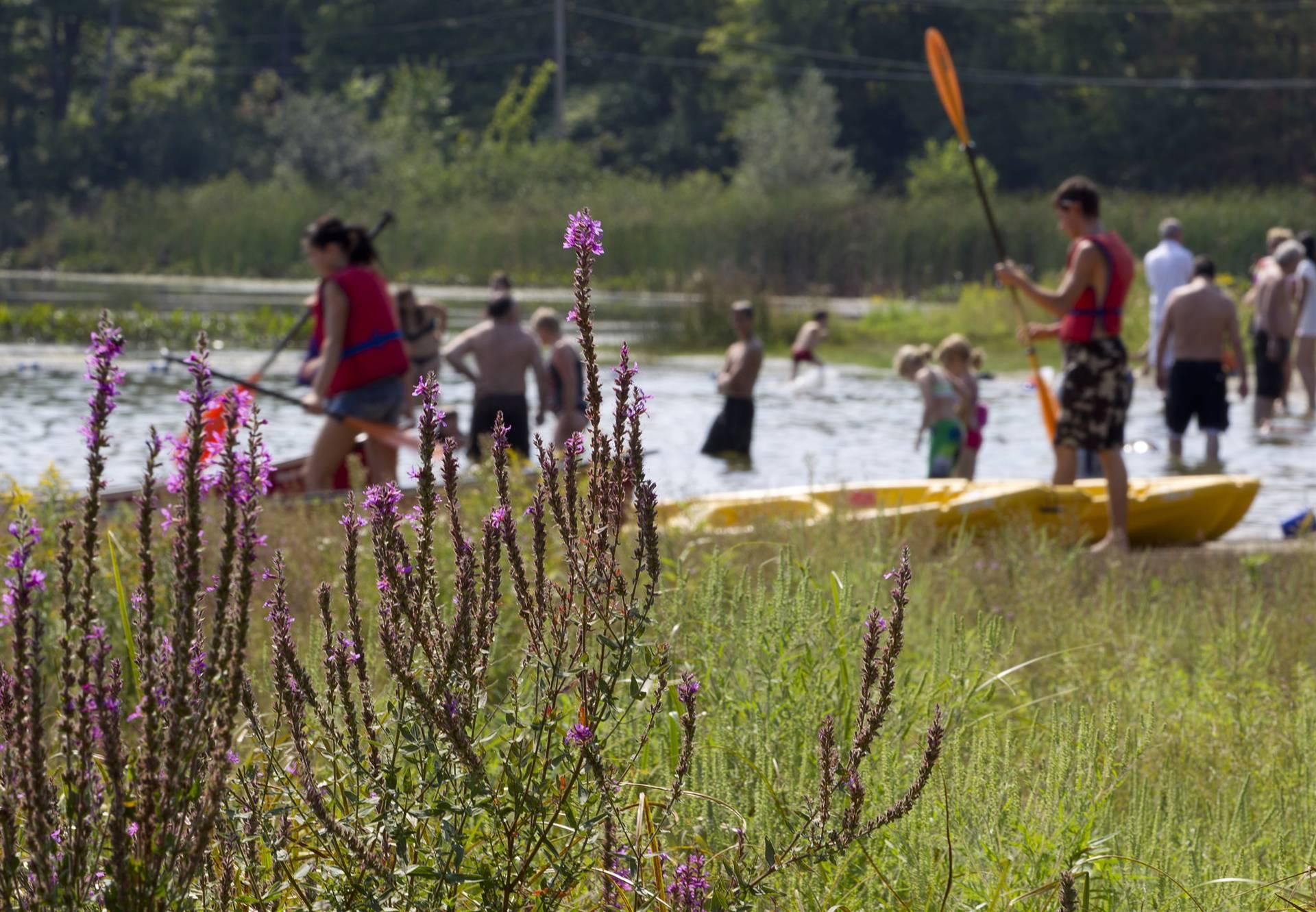 Parc du Lac Beauchamp. Photo : Ville de Gatineau